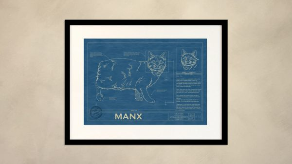 Manx Cat Wall Blueprint