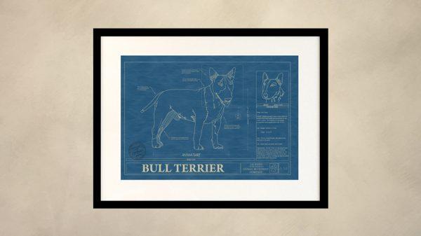 Bull Terrier Dog Wall Blueprint