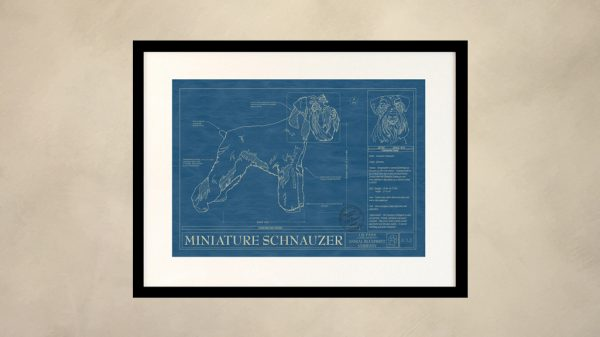 Miniature Schnauzer Dog Wall Blueprint