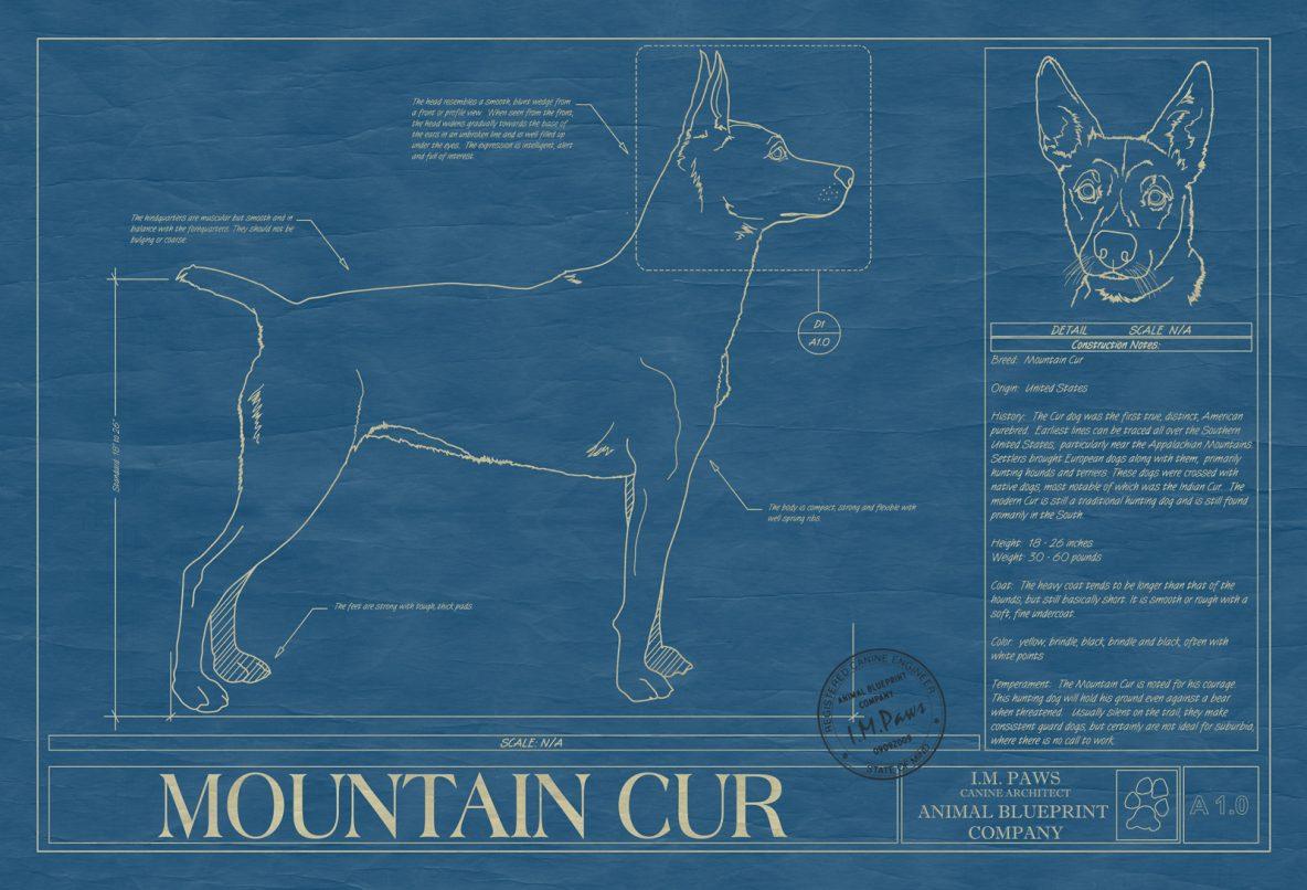 Mountain Cur Dog Blueprint