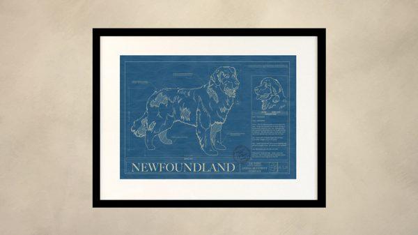 Newfoundland Dog Wall Blueprint