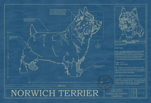 Norwich Terrier Dog Blueprint