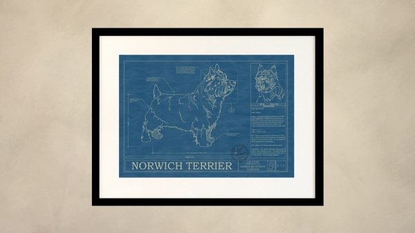 Norwich Terrier Dog Wall Blueprint