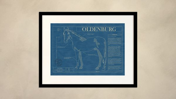 Oldenburg Horse Wall Blueprint