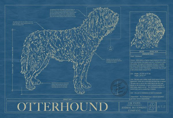 Otterhound Dog Blueprint