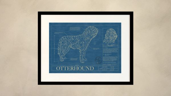 Otterhound Dog Wall Blueprint