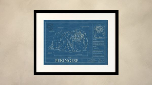 Pekingese Dog Wall Blueprint