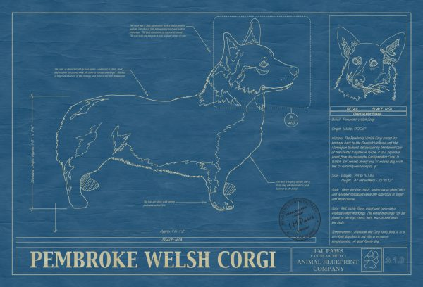 Pembroke Welsh Corgi Blueprint