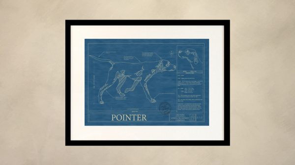 Pointer Dog Wall Blueprint