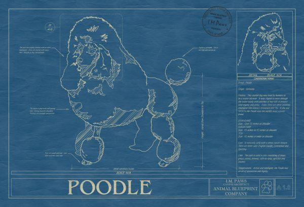 Poodle Dog Blueprint