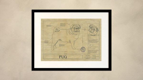 Pug Dog Wall Drawing