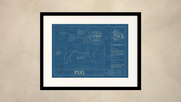 Pug Dog Wall Blueprint
