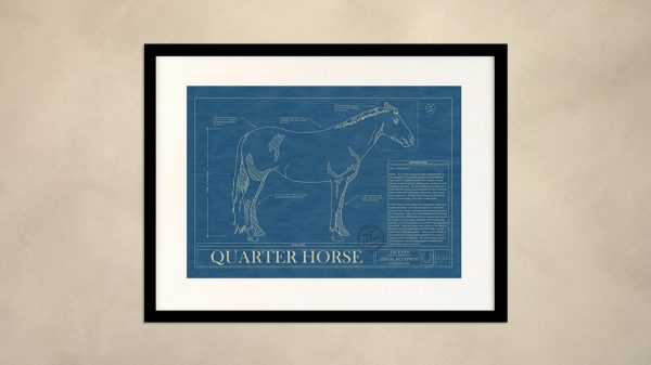 Quarter Horse Wall Blueprint