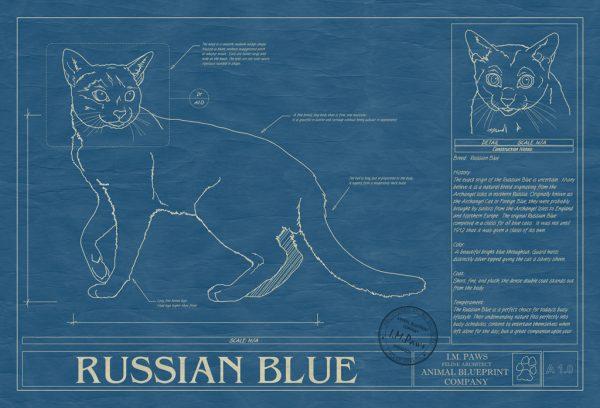 Russian Blue Cat Blueprint