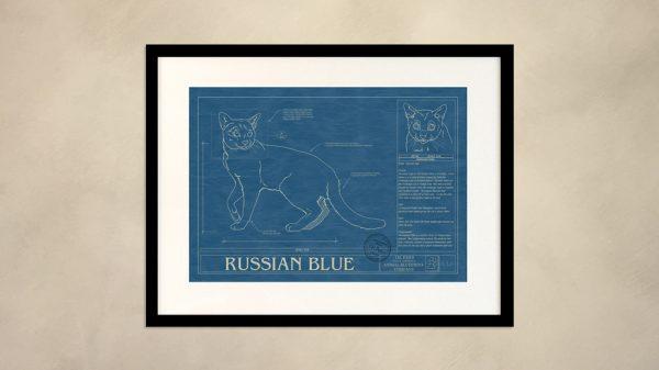Russian Blue Cat Wall Blueprint