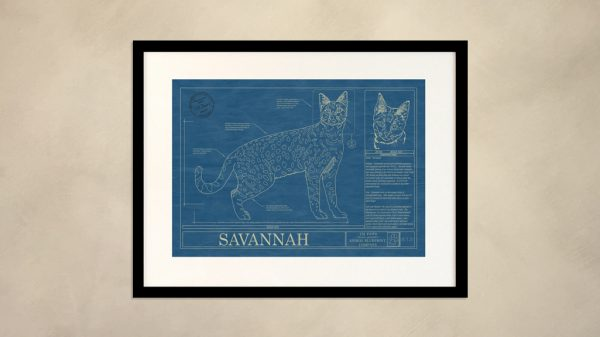 Savannah Cat Wall Blueprint