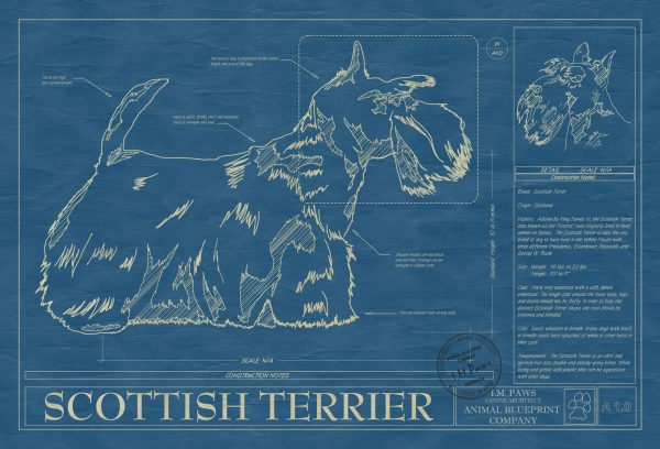 Scottish Terrier Dog Blueprint