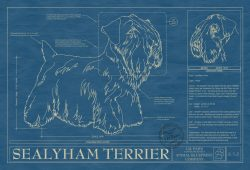 Sealyham Terrier Dog Blueprint