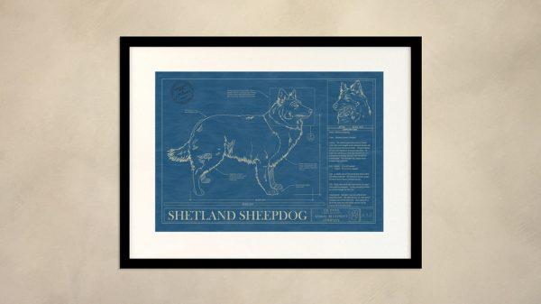Shetland Sheepdog Dog Wall Blueprint