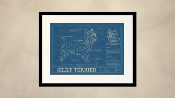Silky Terrier Dog Wall Blueprint