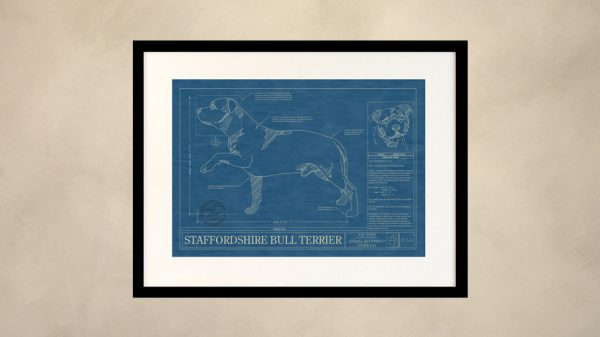 Staffordshire Bull Terrier Dog Wall Blueprint