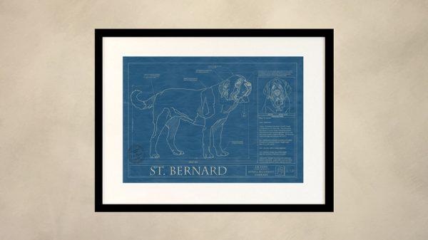Saint Bernard Dog Wall Blueprint