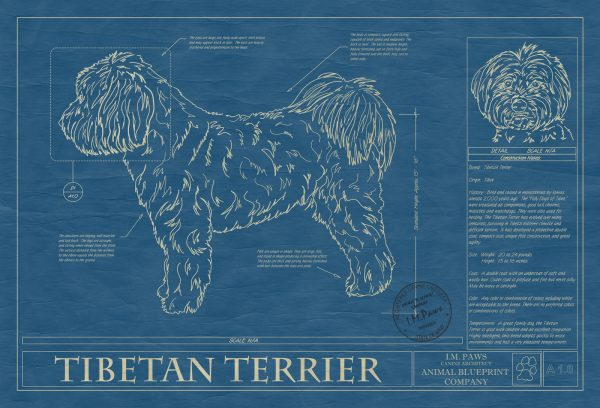 Tibetan Terrier Dog Blueprint