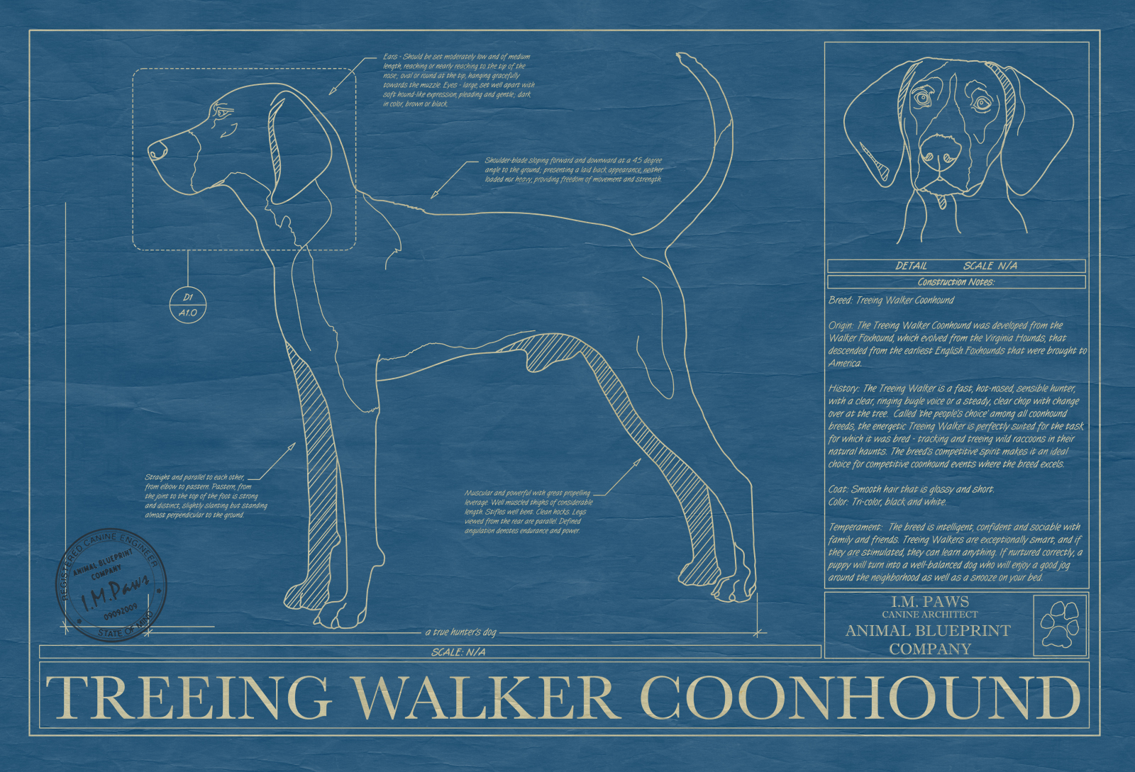 Treeing walker coonhound animal blueprint company treeing walker coonhound dog blueprint malvernweather Image collections