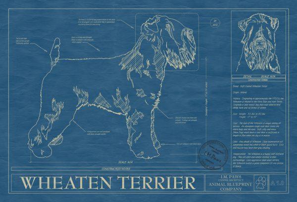 Wheaten Terrier Dog Blueprint