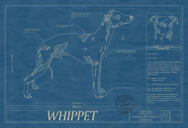 Whippet_dog_blueprint_art