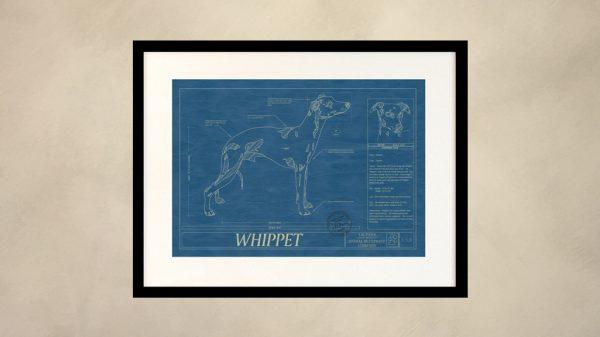 Whippet Dog Wall Blueprint