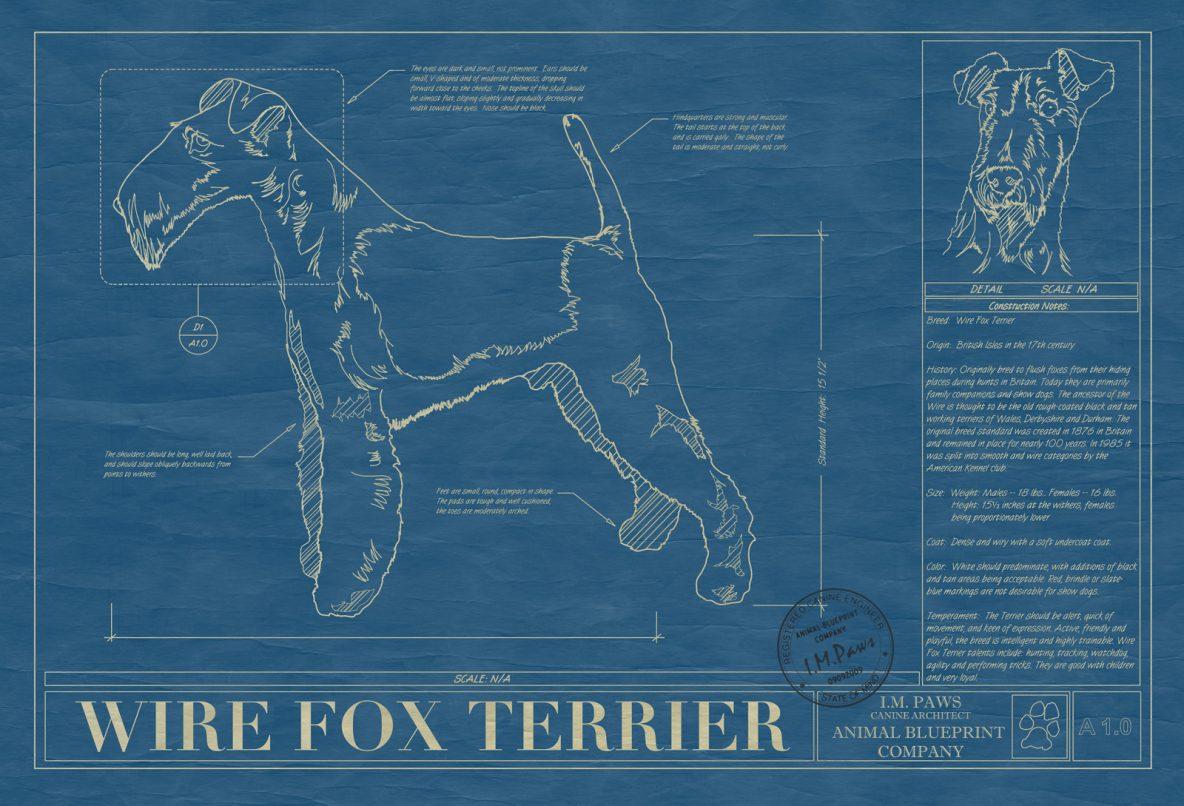 Wire Fox Terrier Dog Blueprint