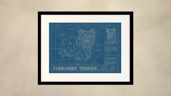 Yorkshire Terrier Dog Wall Blueprint