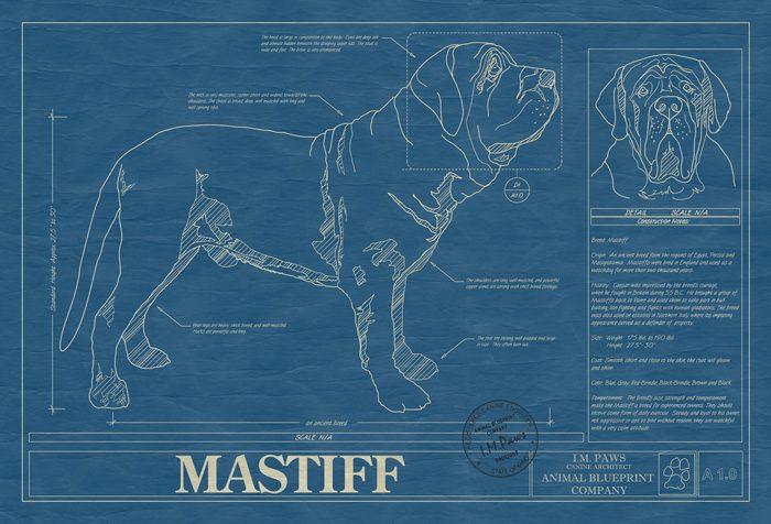 Mastiff animal blueprint company mastiff dog wall blueprint malvernweather Image collections