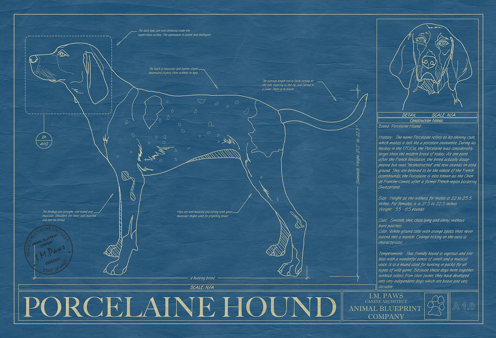 Porcelaine hound print drawing animal blueprint company click image to enlarge malvernweather Gallery