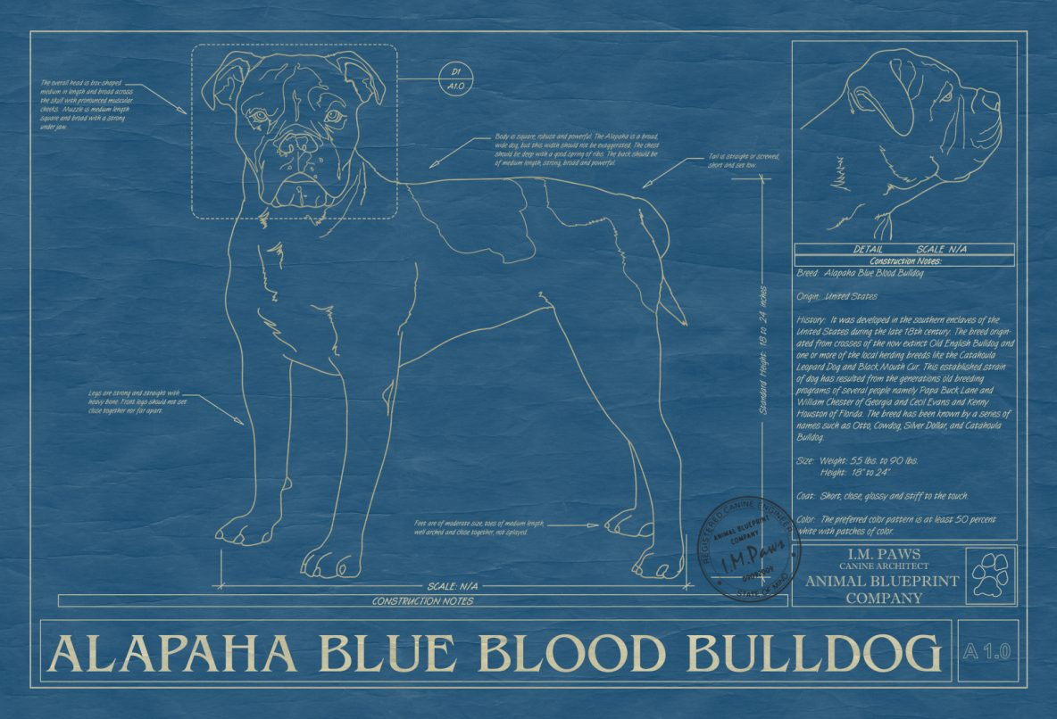 Pet dog animal art print drawings breeds from a to b animal blueprints malvernweather Gallery