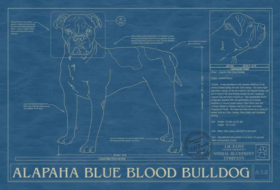 Dog blueprints archives animal blueprint company dog blueprints malvernweather Images